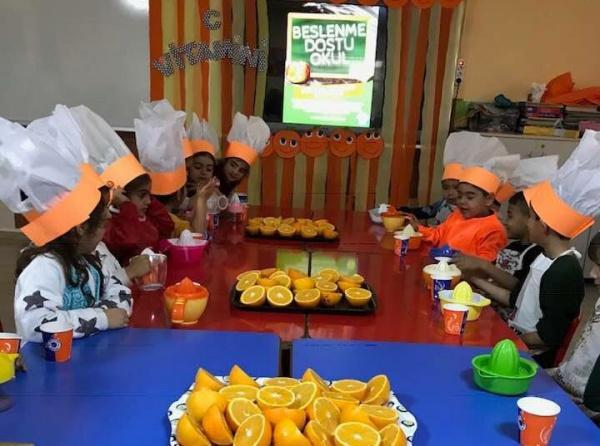 Okul Oncesi Ogrencilerimizin Vitamin Senligi Etkinligi Ibrahim